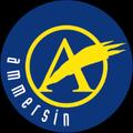 Logo von Rudolf Ammersin GesmbH
